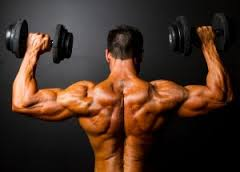 All About Shoulder Strength &Stability