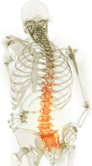 The Cause Of, And Solution To, BackPain