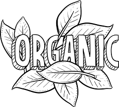 Organic Food: My Current Stance